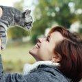 猫好き芸能人の杉本彩さんが理事長を務める「どうぶつ2020プロジェク…