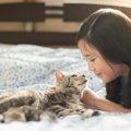 子猫の口がくさい5つの原因と対処法