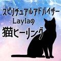 Laylaの猫占い  瞳が茶色の猫ちゃんは『不安な時』飼い主にできる事…