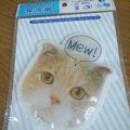 おしゃれな100円ショップ「Seria」の猫グッズがかわいい!!