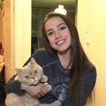 ザギトワ選手の愛猫が可愛い!名前や種類、普段の生活とは