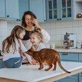 猫が『テーブル』に乗りたがるワケ4つ!効果的なしつけの方法とは?