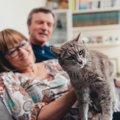 いつもと違う行動に注意!猫の『認知症予備軍』チェックリスト3つ!