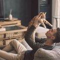 実は猫に嫌がられてる!飼い主の行動7つ