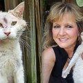 顔がひどく腫れ上がった猫…奇跡の出会いを果たして幸せなセカンドライフへ♡