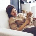 猫を長生きさせる5つの方法と寿命が長い種類