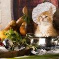 猫に昆布を与える時の注意点