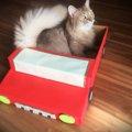 猫のためのDIY♪ひと手間加えて『オープンカー風ダンボールハウス』を…
