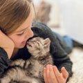 猫アレルギーでも飼える猫の品種9選!