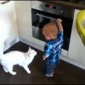 オーブンで遊ぶ赤ちゃんに、猫ちゃん直々教育指導