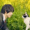 旅猫リポートってどんな映画?見どころや公開日について