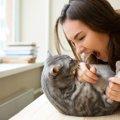 猫の噛み癖ができてしまう理由と正しい治し方
