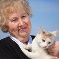 猫が老化してきた時の5つのサイン