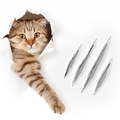 猫が壁で爪とぎをしてしまうのを止めさせるには?