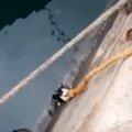 海に落ちた猫!ロープにしがみついて九死に一生を得た!