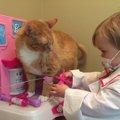 10年以上前に道で保護した子猫が、今では娘たちの子守役に!
