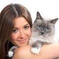 猫が好きな芸能人で今もっとも旬な10人を一挙ご紹介!