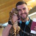 猫と旅行!泊まれるホテルやお出かけの時の注意点