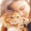 猫との信頼関係を深める5つの方法
