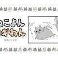 ねこよんコギわん【第25話】「シャアアア」