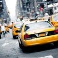 猫をタクシーに乗せる時のマナーと料金について