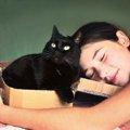 黒猫のシルエットがおしゃれ!おススメ雑貨5選