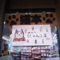 猫好き店主さんが開いた猫本だらけの本屋さん、にゃんこ堂!