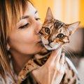 猫の感染症は人にもうつる?症状と治療の方法