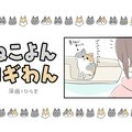 ねこよんコギわん【第23話】「豪快なおしりのメンテナンス」