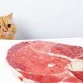 猫にハムを与えても大丈夫?食べて良いもの悪いもの