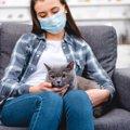 風邪やインフルエンザのとき猫と接しても大丈夫?