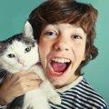 成猫の里親にる方法。出会うための場やお勧めする理由