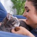 愛猫が自分に似ているなぁと思う瞬間3つ