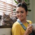 一人暮らしで猫を飼うメリット・デメリット