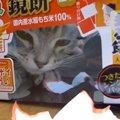 「中身より箱でしょ♪」猫ちゃん、鏡餅の箱に大はしゃぎ!