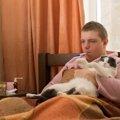 手足口病は猫にもうつる?人から猫に感染する病気について