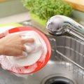 猫のお皿がぬるぬるする!ぬめりの原因と洗い方