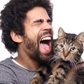 飼い主が無意識にしてしまっている『猫への嫌がらせ』5つ