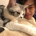勝地涼はかなりの猫好き!名前や品種、前田敦子とのエピソードなど