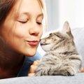 猫が鼻キスをする意味やその時の注意点
