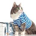 可愛い猫に買ってあげたいアクセサリー・洋服8選