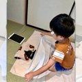美しき兄弟愛♡寝ている猫さんにそっとタオルをかけるお兄ちゃん