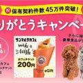 【締切間近】ペット保険成約で豪華Wキャンペーン
