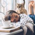 猫に好かれる人ってどんな人?4つのタイプをご紹介!