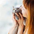 猫が抱っこされたがる心理とは?