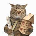 はじめての猫小屋DIY!キャットハウスを手作りする3つの方法