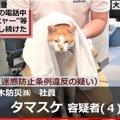 猫のタマスケ課長逮捕がSNSで話題!余罪も発覚で大ピンチ?