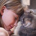 にゃんこは子供嫌い?答えはNO!我が家で実践した『猫と子供が仲良く…