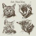 猫のリアルなイラスト7選!写真みたいに描く方法