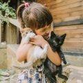 【猫の多頭飼いを成功させる】気になるアレコレ!実際飼育費はいくら…